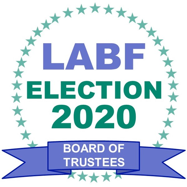 2020_Election_Logo